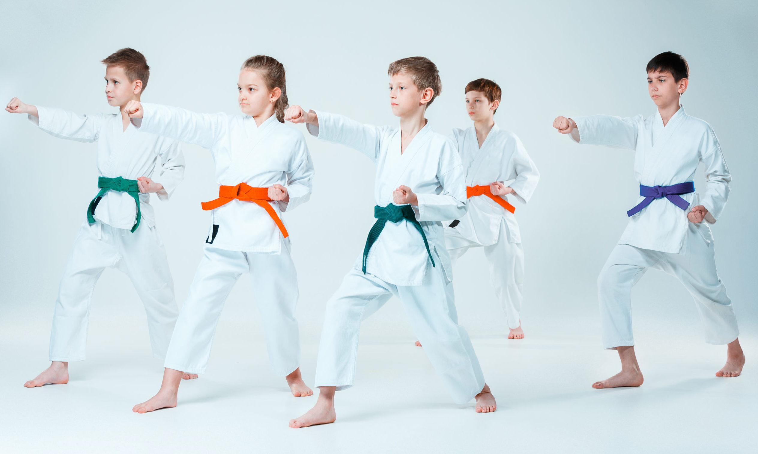 As artes marciais podem unir pais e filhos.
